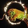 Цирки в Кушве